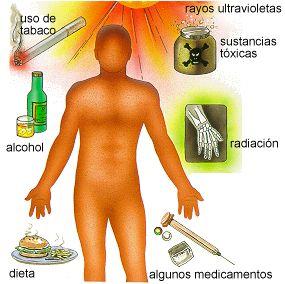 Cancer y sus principales factores de riesgo