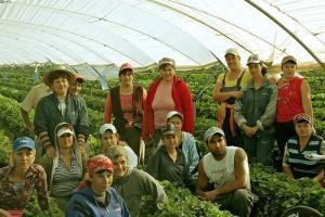 Celebran  42 años del Programa de Trabajadores Agrícolas Temporales México-Canadá