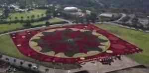 """Consiguen productores de Morelos nuevo récord Guinness por el """"Tapete Floral más grande del mundo"""""""