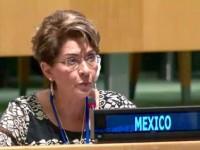 En el marco de la Décima Conferencia de los Estados Partes de la Convención sobre los Derechos de las Personas con Discapacidad, la doctora Mercedes Juan López, directora general del Consejo Nacional para el Desarrollo y la Inclusión de las Personas con Discapacidad (Conadis),