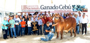En representación del secretario José Calzada Rovirosa,  el coordinador general de Ganadería entregó los premios 2016 a lo mejor de la ganadería cebú en México.