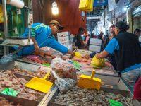 Acuerdan veda temporal de todas las especies de camarón para el 2019 en el Golfo de México y el Caribe