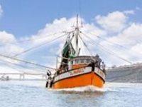 Establece Sader periodos y zonas de veda para todas las especies de camarón del Golfo de México y Mar Caribe