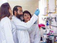 Combate IPN asma alérgica con vacunas creadas con antígenos de polen