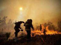 Gobierno despliega casi cuatro mil brigadistas para  combate de incendios forestales