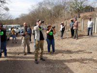 Gana Mazatlán el City Nature Challenge 2019;  se reafirma como Turismo de Naturaleza